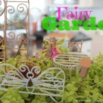 DIY Fairy Garden for Kids