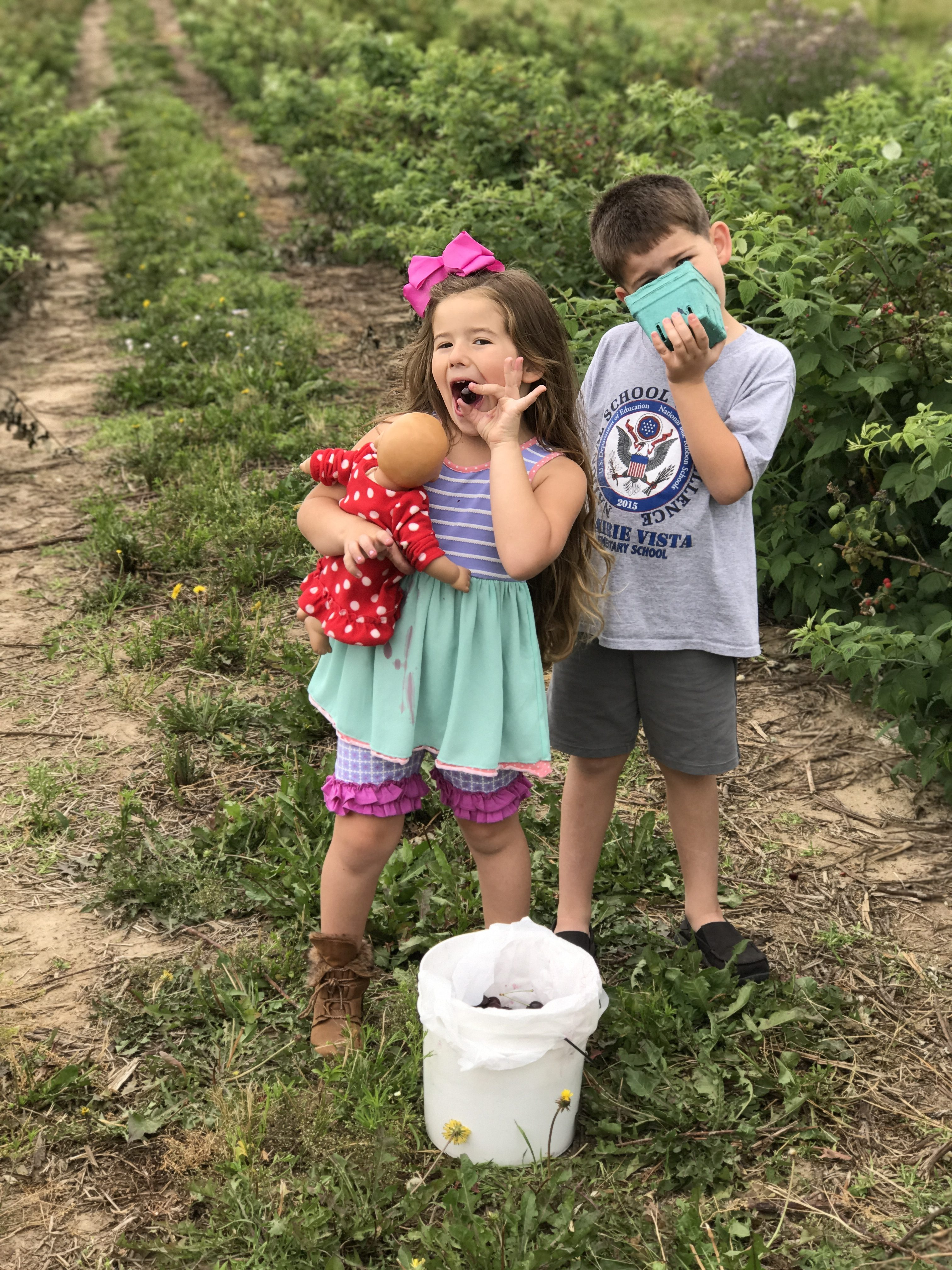 Two Crazy Cherry Picking Kiddos by Every Day is an Occasion